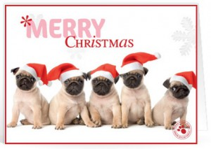 Kerst tekst voor geliefde voor op een kaartje